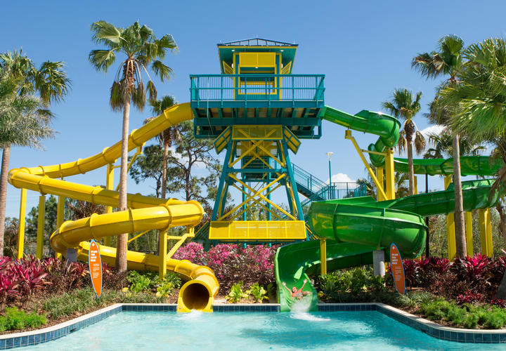 dual jungle waterslides